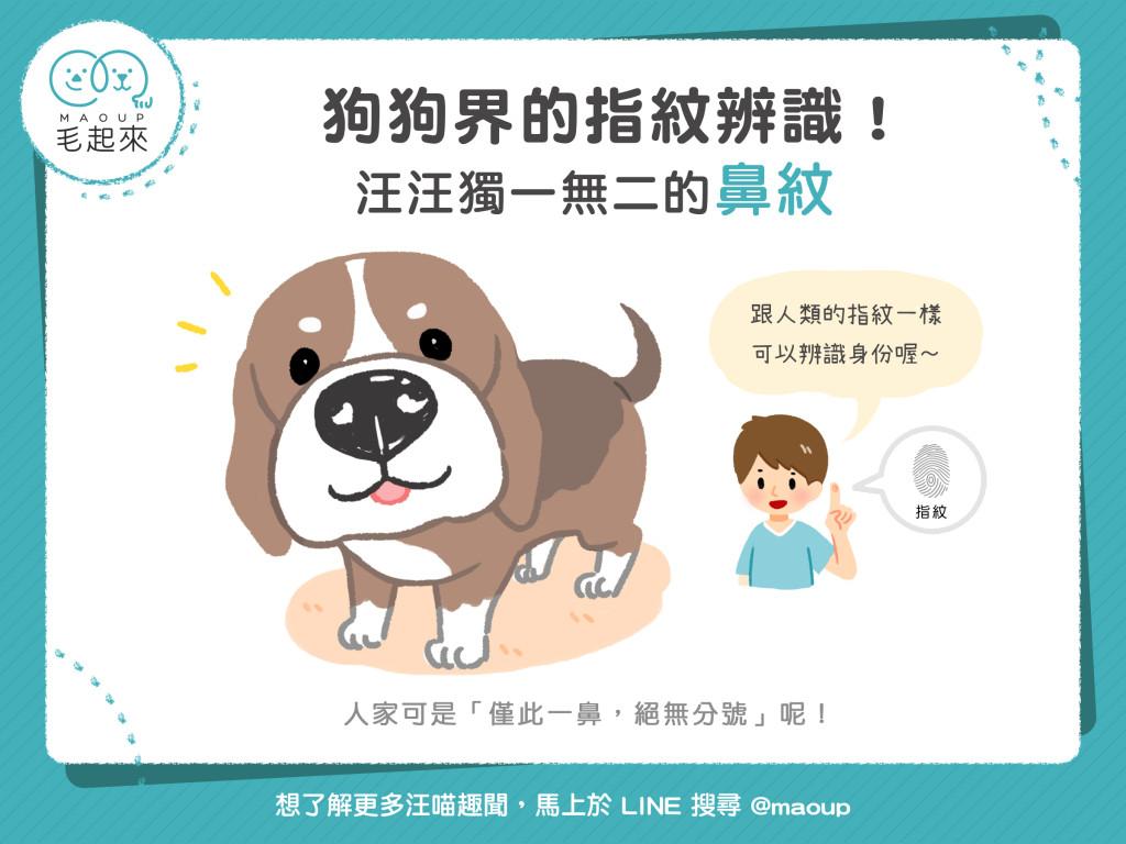 狗狗界的指紋辨識!汪汪獨一無二的鼻紋