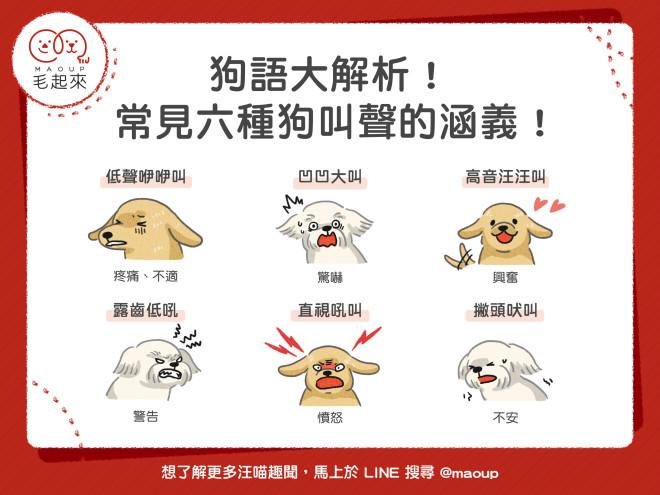 190305_狗語大解析!常見六種狗叫聲的涵義!