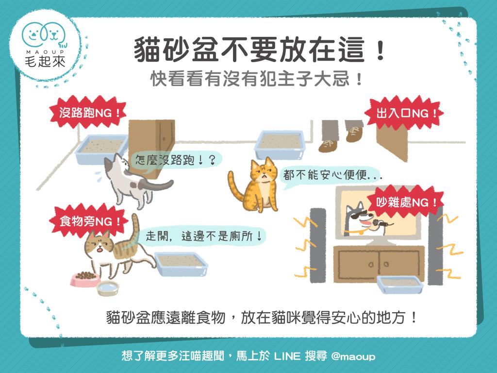 貓砂盆不要放在這4個地方