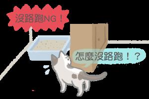 別將貓砂盆放在沒有路可以跑的地方
