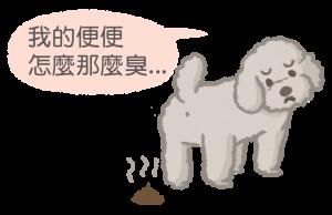 狗狗腸胃炎導致糞便帶惡臭