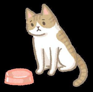 貓體重下降_1