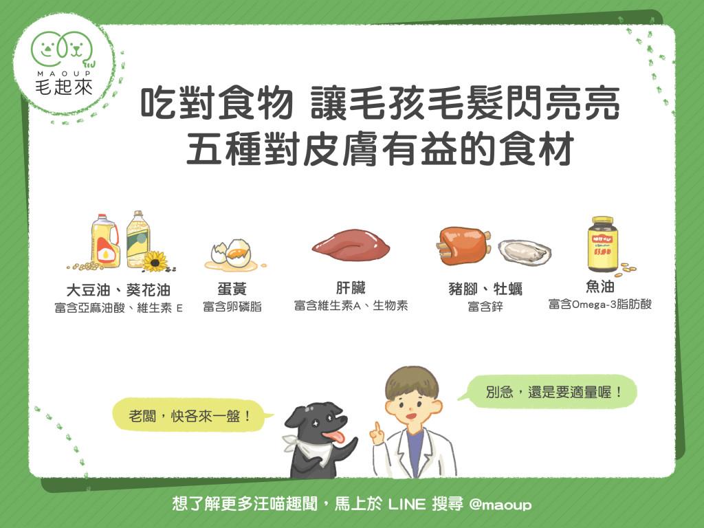 五種對貓狗皮膚有益的食材