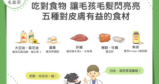 五種對狗貓皮膚有益的食材