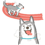狗狗喘氣是為了獲得氧氣