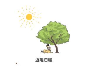狗狗中暑要趕快遠離日曬