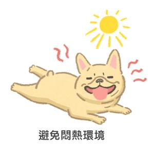 短鼻犬夏天避免悶熱環境