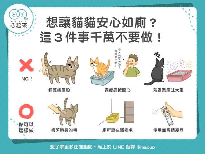190620_想讓貓貓安心如廁?這3件事千萬不要做-Carol改