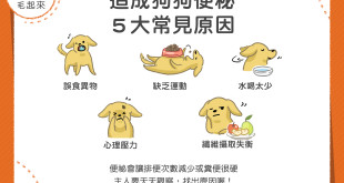 造成狗狗便秘5大常見原因