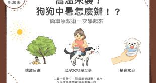 狗狗中暑急救術