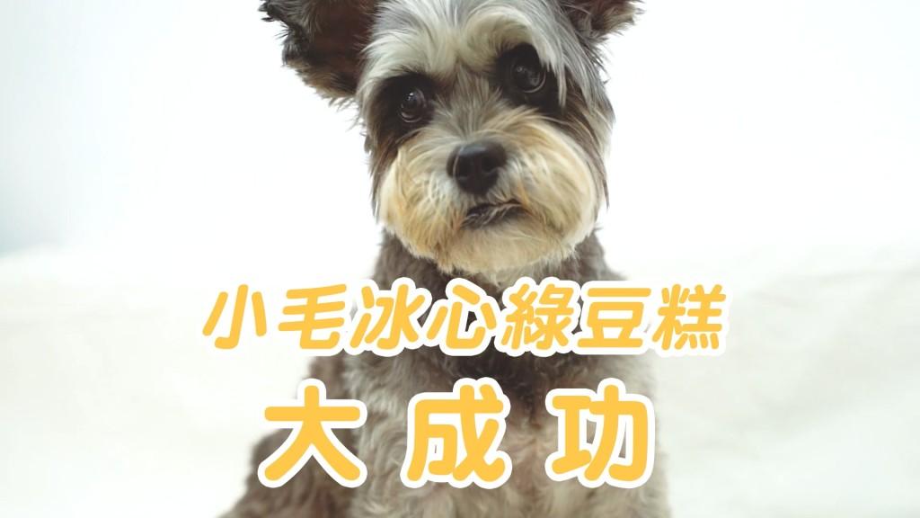 190912_小毛綠豆冰糕v1_無配樂.mp4_20190912_101442.569