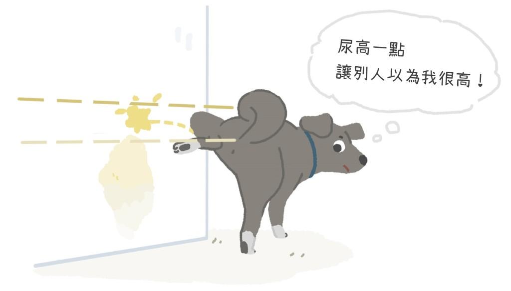 202001_人小志氣高小狗更要尿高高