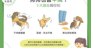 狗狗中風徵兆