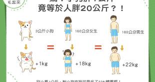 【汪汪康健】驚!小狗胖1公斤竟等於人胖20公斤?!