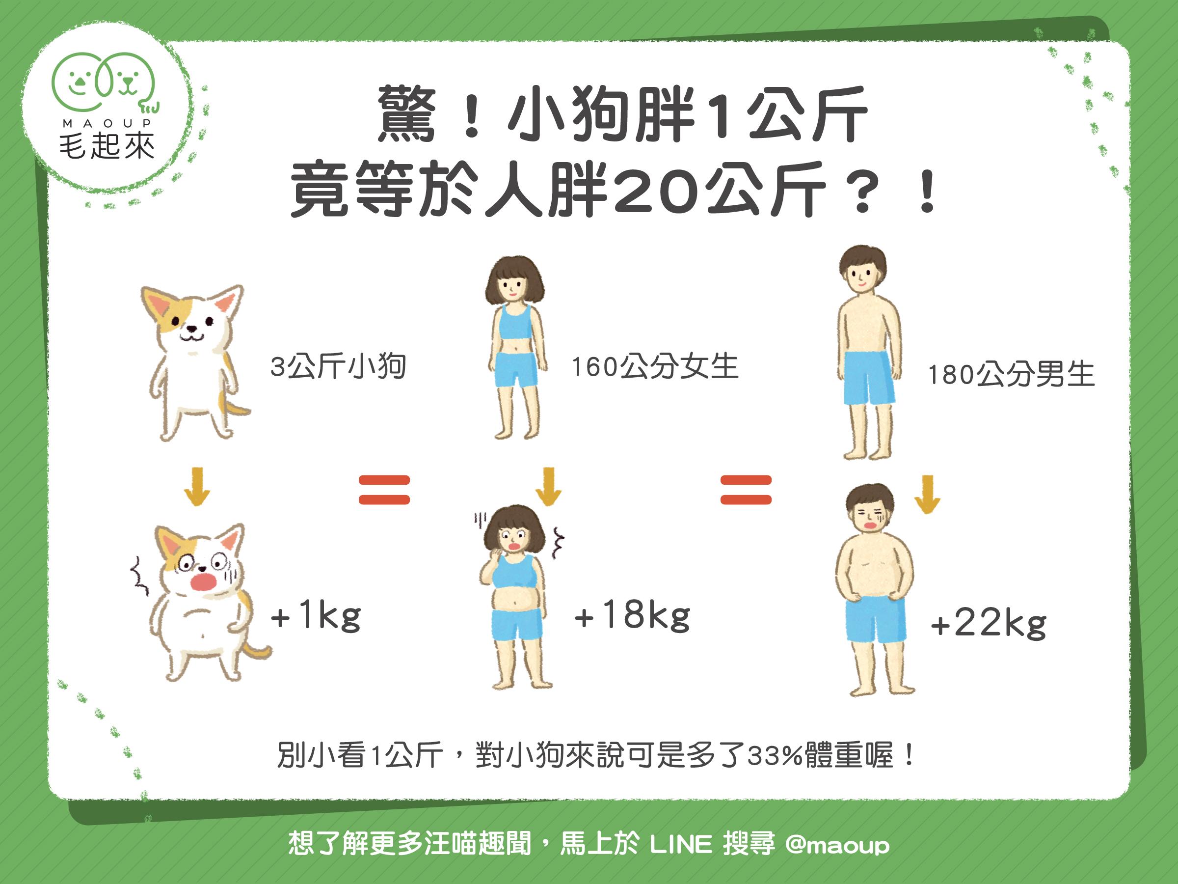 【汪汪康健】驚!小狗胖1公斤,竟等於人胖20公斤?!