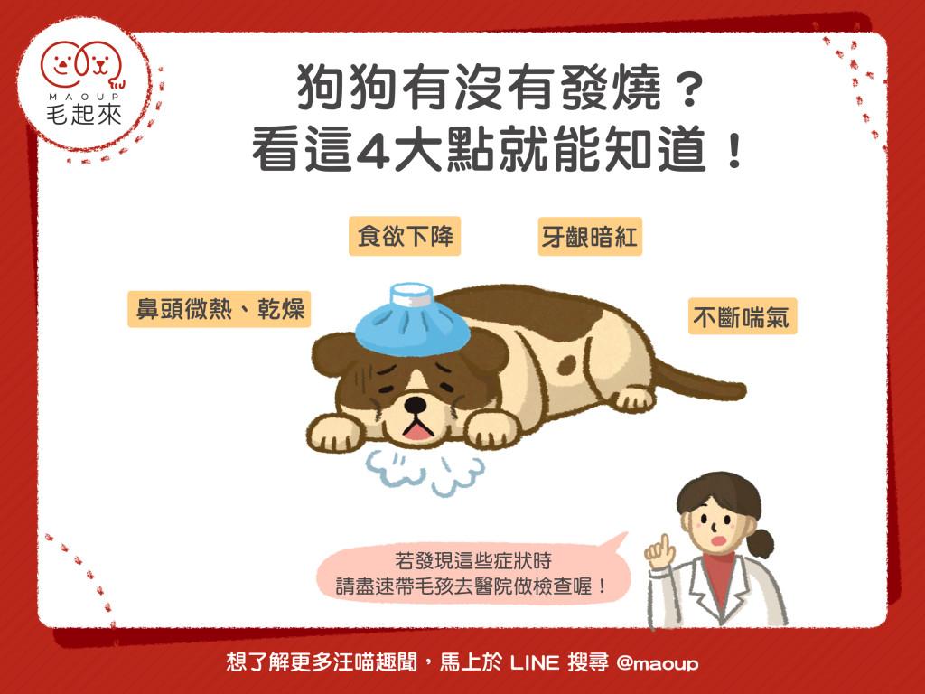 如何判斷狗狗是否發燒?
