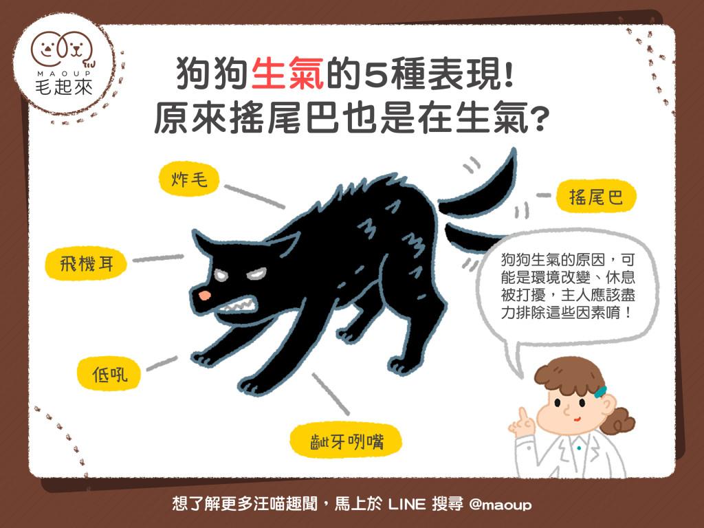 狗狗生氣的5種表現