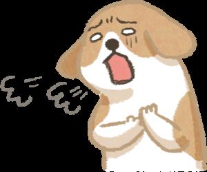 狗狗呼吸急促咳嗽