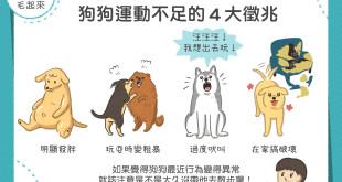 狗狗運動不足徵兆