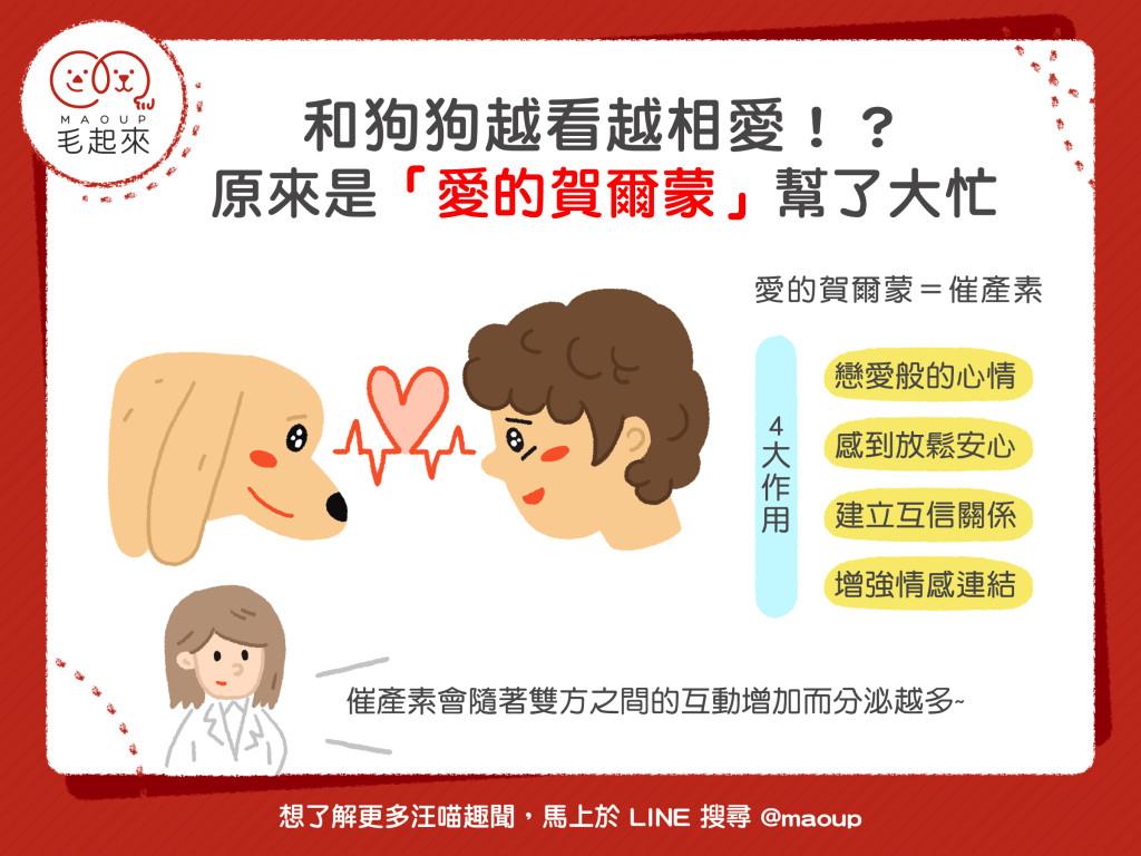 和狗狗互看會產生愛的賀爾蒙