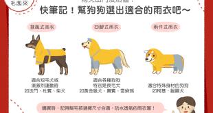 幫狗狗選雨衣