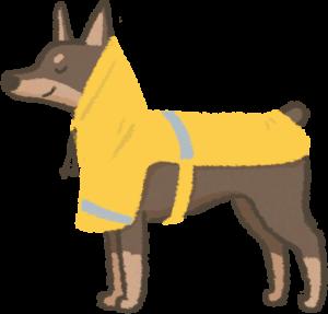 狗狗穿披風式雨衣