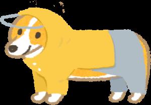 狗狗穿兩件式雨衣