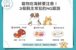 貓狗吃海鮮要注意