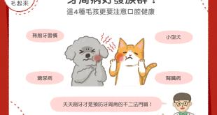 貓狗牙周病好發族群