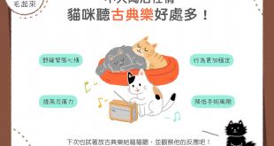 貓咪聽古典樂的四種好處