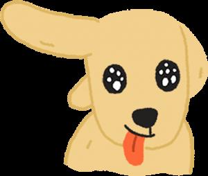 閃亮亮狗狗