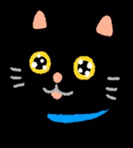 閃亮亮貓貓