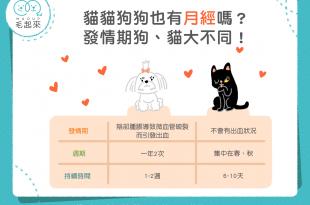 貓狗也有月經嗎