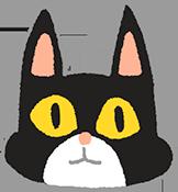 貓咪心情好耳朵向前立起