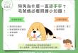 【狗狗行為】狗狗一直舔手手是因為這2大原因!改善方法一次看