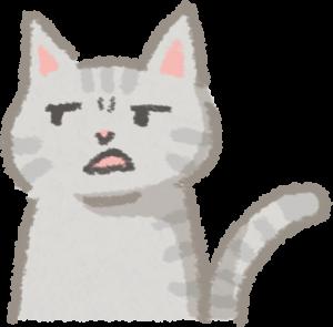 貓嗅覺比狗靈敏