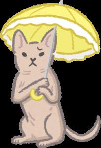 無毛或短毛貓狗需注意防曬