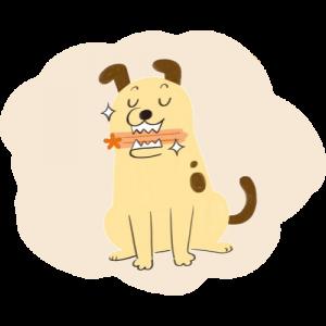 狗狗咬潔牙棒