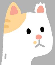 TNR後的貓耳朵缺一角