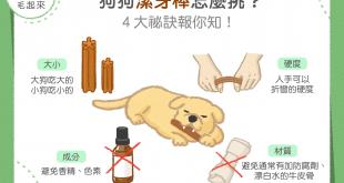 狗狗潔牙棒怎麼挑