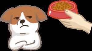 貓狗吃膩食物導致挑食