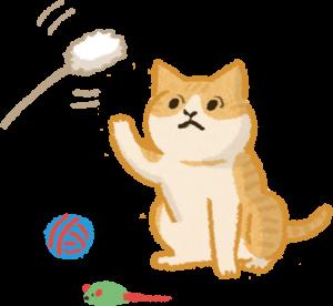 用零食玩具吸引貓狗拍照