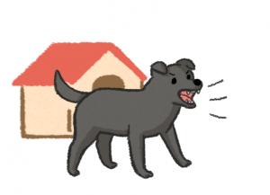 狗狗領地被侵犯