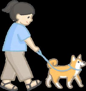 老狗散步短時間、多次數