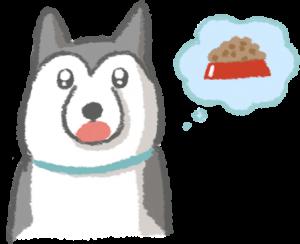 狗狗表達需求(口渴、肚子餓)