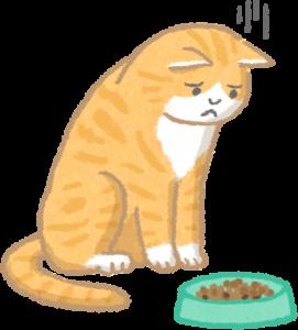 貓肛門腺發炎 食慾不振