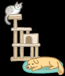 讓狗貓保有獨立生活空間